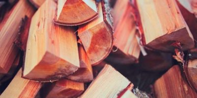 Chopped wood to be used for essential oil